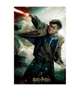 Puzzle Lenticulaire 3D Harry (300)