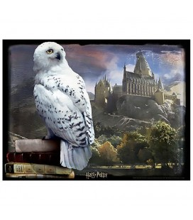Puzzle Lenticulaire 3D Hedwig (500)