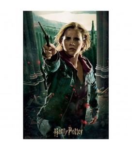 Puzzle Lenticulaire 3D Hermione (300)