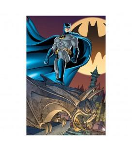 Puzzle Lenticulaire 3D Bat Signal (300)