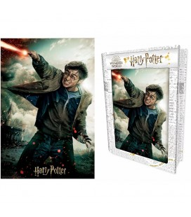 Tin Book Puzzle Lenticulaire 3D Harry (300)