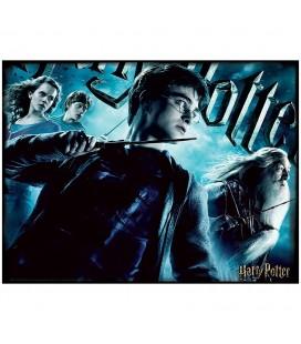 Puzzle Lenticulaire 3D Harry Potter (500)