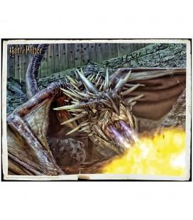 Puzzle Lenticulaire 3D Dragon (300)
