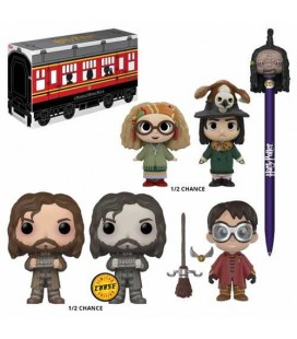 Funko Box Harry Potter Limited Edition [20]
