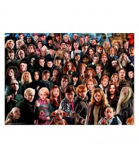 Puzzle Harry Potter Challenge (1000)
