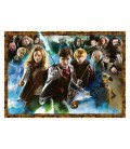 Puzzle Harry Potter Young Wizard (1000)