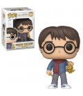 Pop! Harry Potter [122]